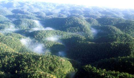 Photo credit: Jamaica Environment Trust